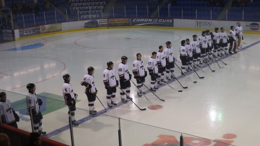 Concordia Stingers, men's hockey team